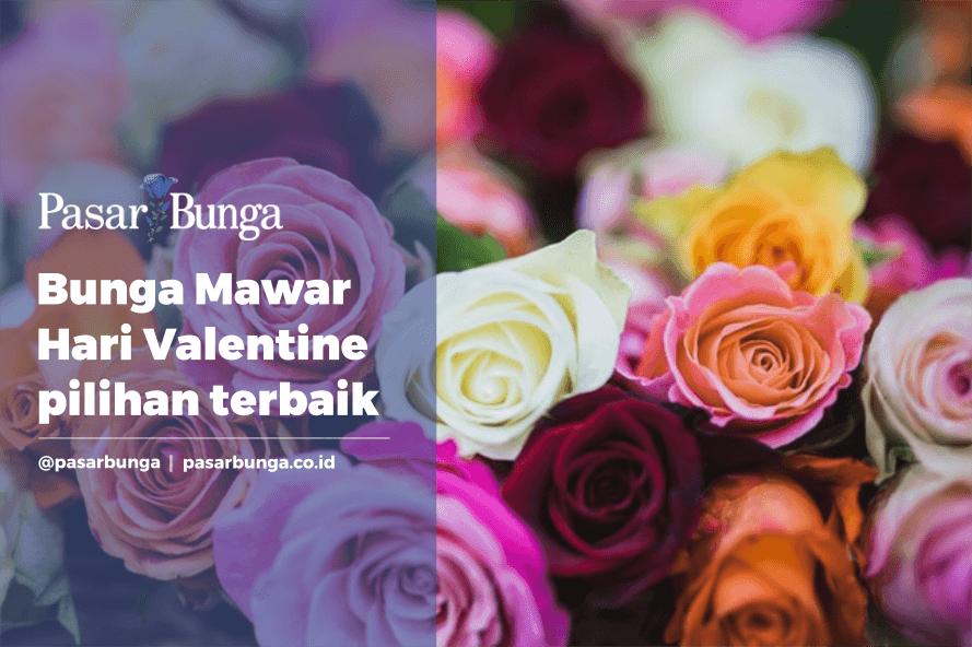 Bunga Mawar khusus untuk valentine murah dijakarta